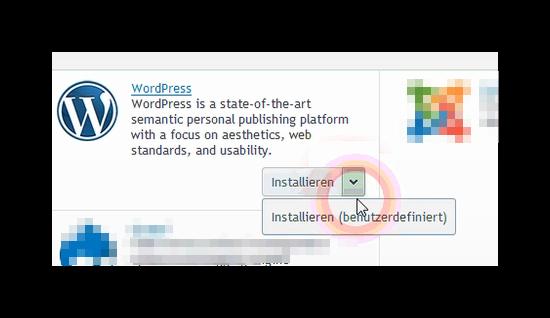 Auswahl der WordPress benutzerdefinierte Installation