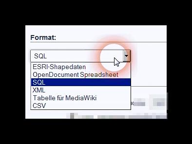 Auswahl des Formats für den Import einer Datei