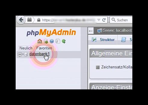 Navigation vom PHPMyAdmin - Datenbankansicht