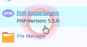 PHP Version anzeigen in Plesk